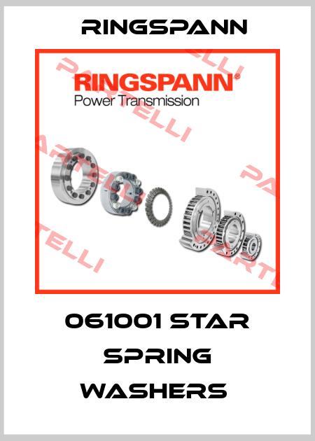 Ringspann-061001 STAR SPRING WASHERS  price