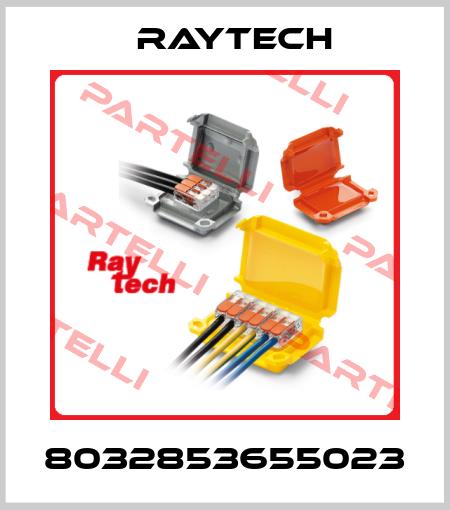 Raytech-8032853655023 price
