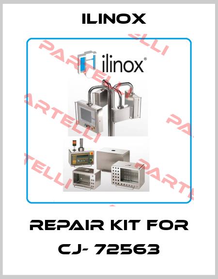 Ilinox-Repair kit for CJ- 72563 price